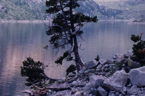Parque Nacional Aigüestortes