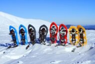 Raquetas de nieve y Románico en la Vall de Boí